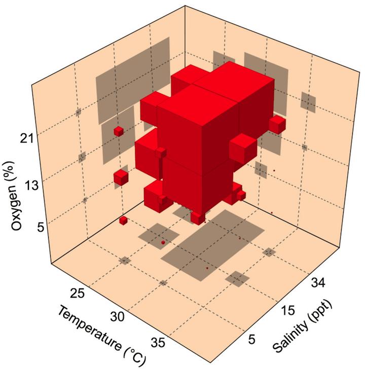 Confusing 3D graph