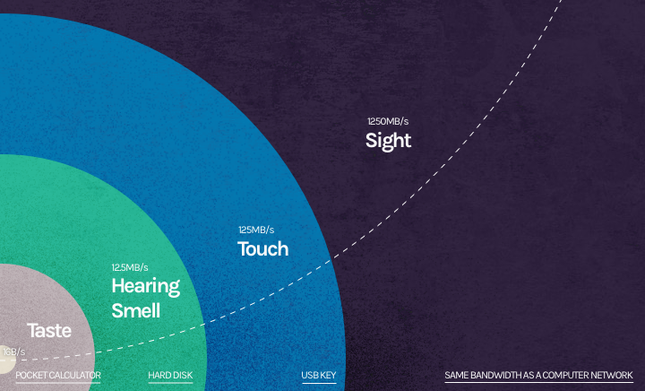 Data Visualization - Bandwidth of Senses